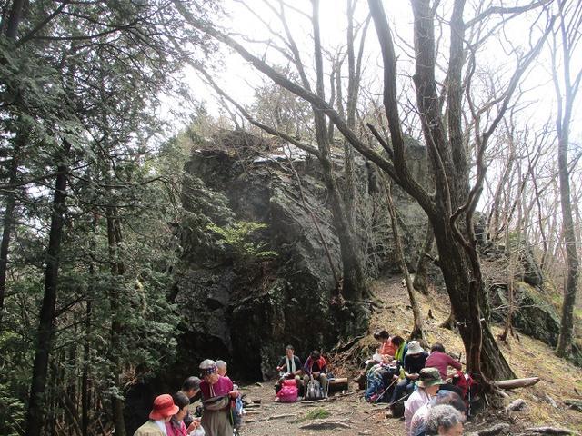 画像4: 4月25日に山旅会 「鳴神山」 ツアーに行ってきました!