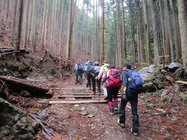 画像1: 4月25日に山旅会 「鳴神山」 ツアーに行ってきました!