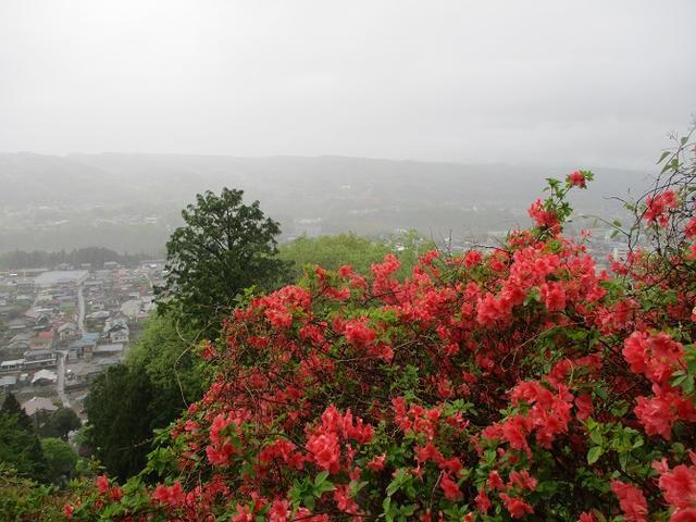 画像1: 4月26日に 「琴平丘陵から羊山公園」 ツアーに行ってきました!
