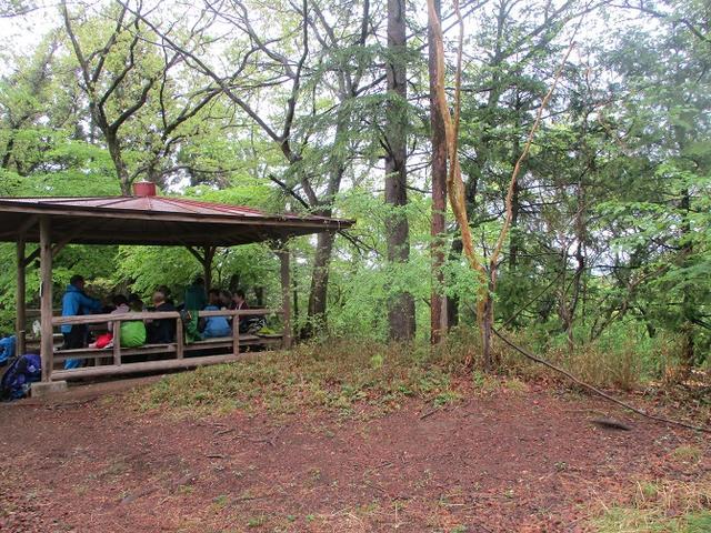 画像7: 4月26日に 「琴平丘陵から羊山公園」 ツアーに行ってきました!