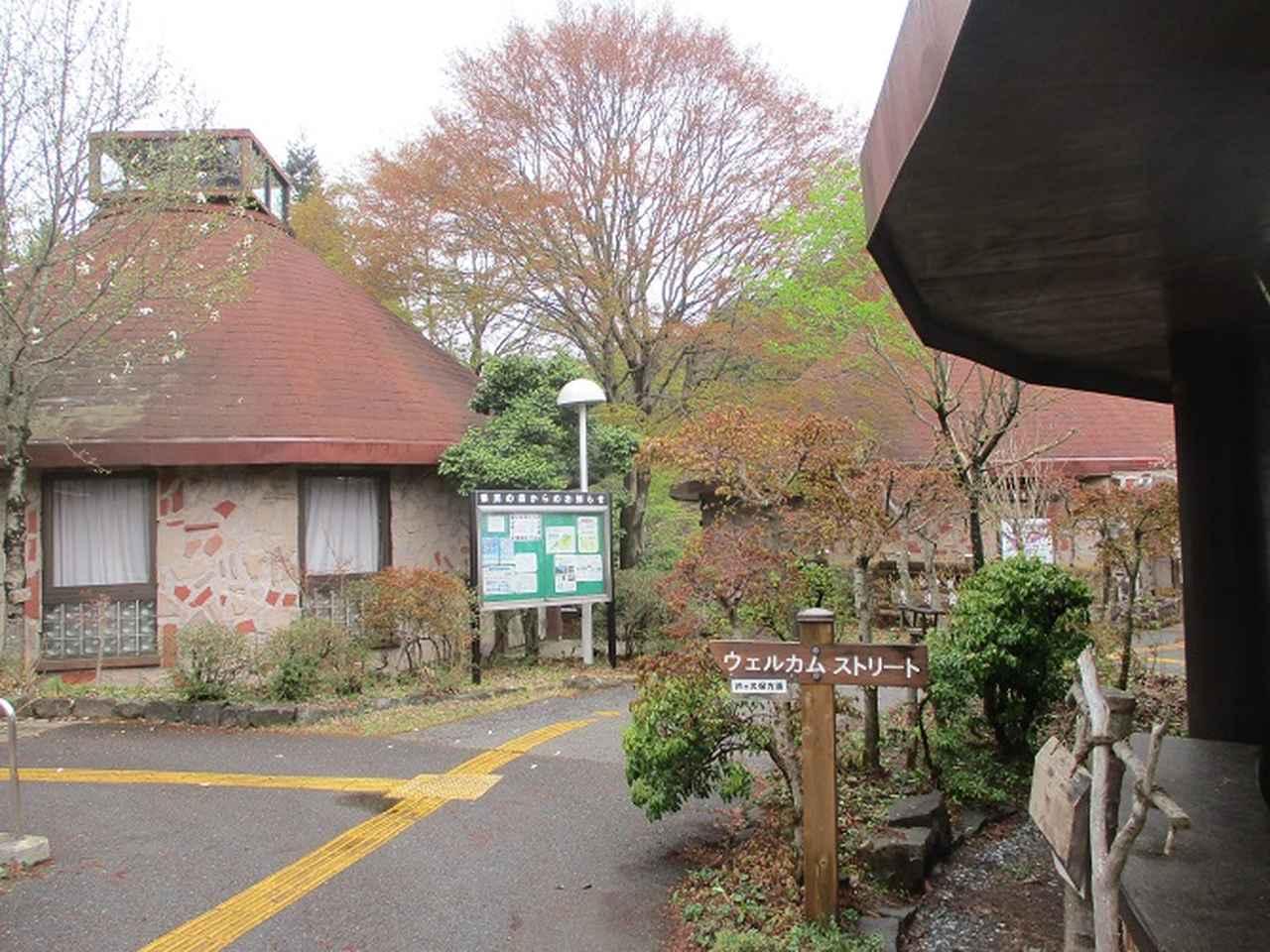画像9: 本日は 秩父丸山 ツアーの下見のご報告です!