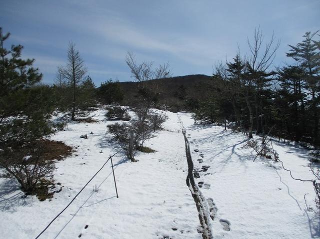 画像3: 【山旅会・登山ガイドこだわりツアー】岡田ガイドからの便り・籠坂峠から三国山ツアーの下見に行ってきました!