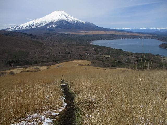 画像10: 【山旅会・登山ガイドこだわりツアー】岡田ガイドからの便り・籠坂峠から三国山ツアーの下見に行ってきました!