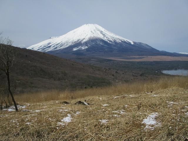 画像9: 【山旅会・登山ガイドこだわりツアー】岡田ガイドからの便り・籠坂峠から三国山ツアーの下見に行ってきました!