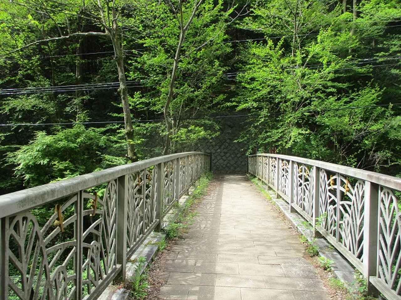 画像10: 5月の山旅会 西山峠から高尾山 ツアーの直前下見に行ってきました!