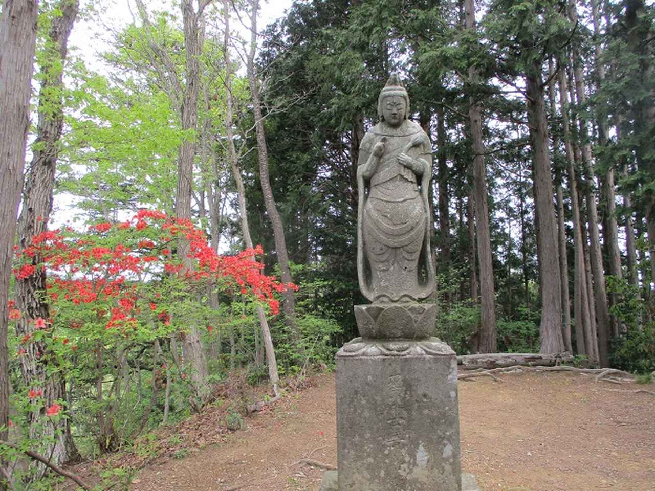 画像7: 5月の山旅会 西山峠から高尾山 ツアーの直前下見に行ってきました!