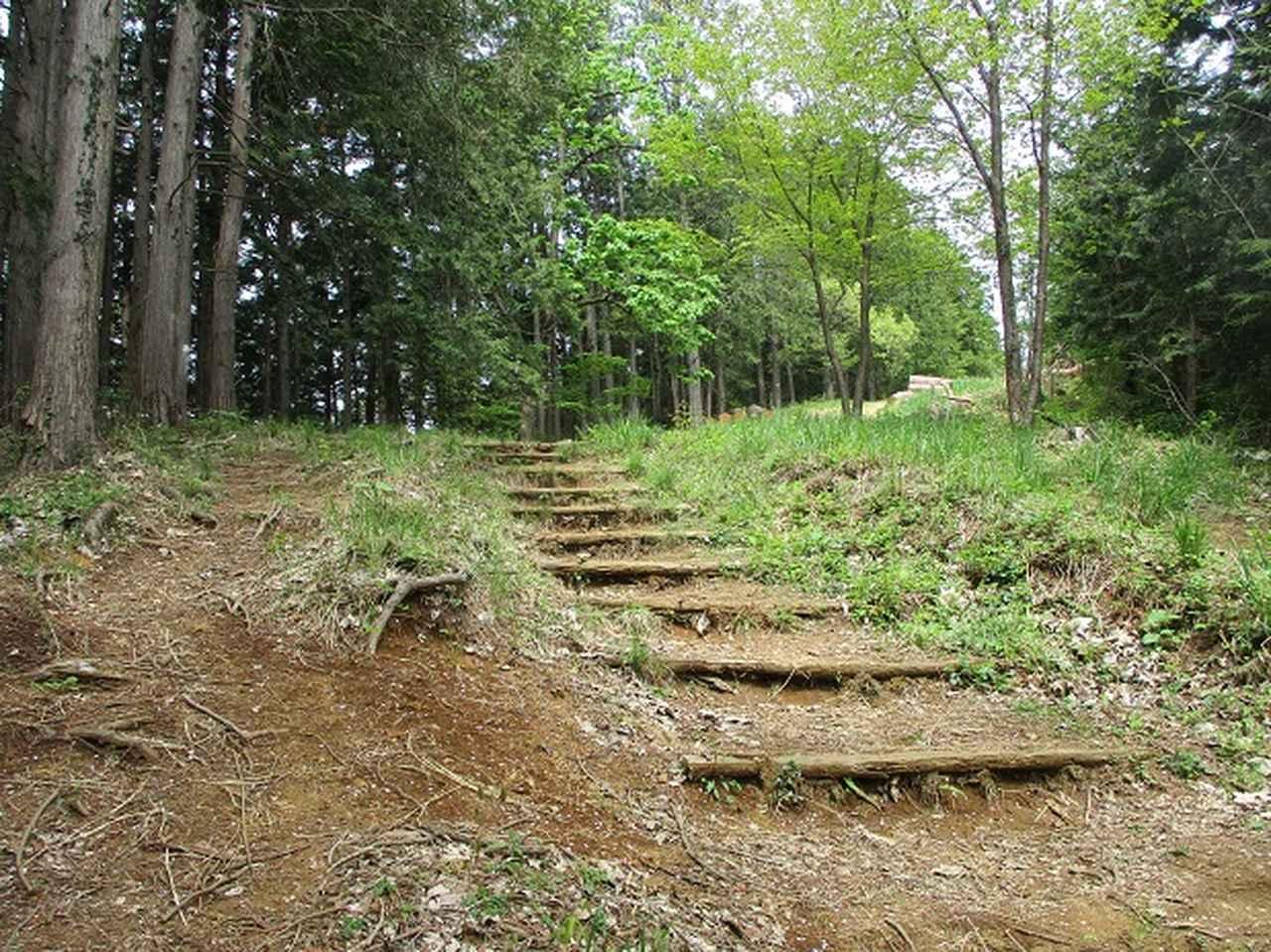 画像11: 5月の山旅会 西山峠から高尾山 ツアーの直前下見に行ってきました!