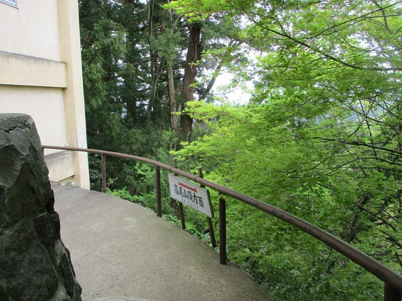 画像15: 5月の山旅会 西山峠から高尾山 ツアーの直前下見に行ってきました!