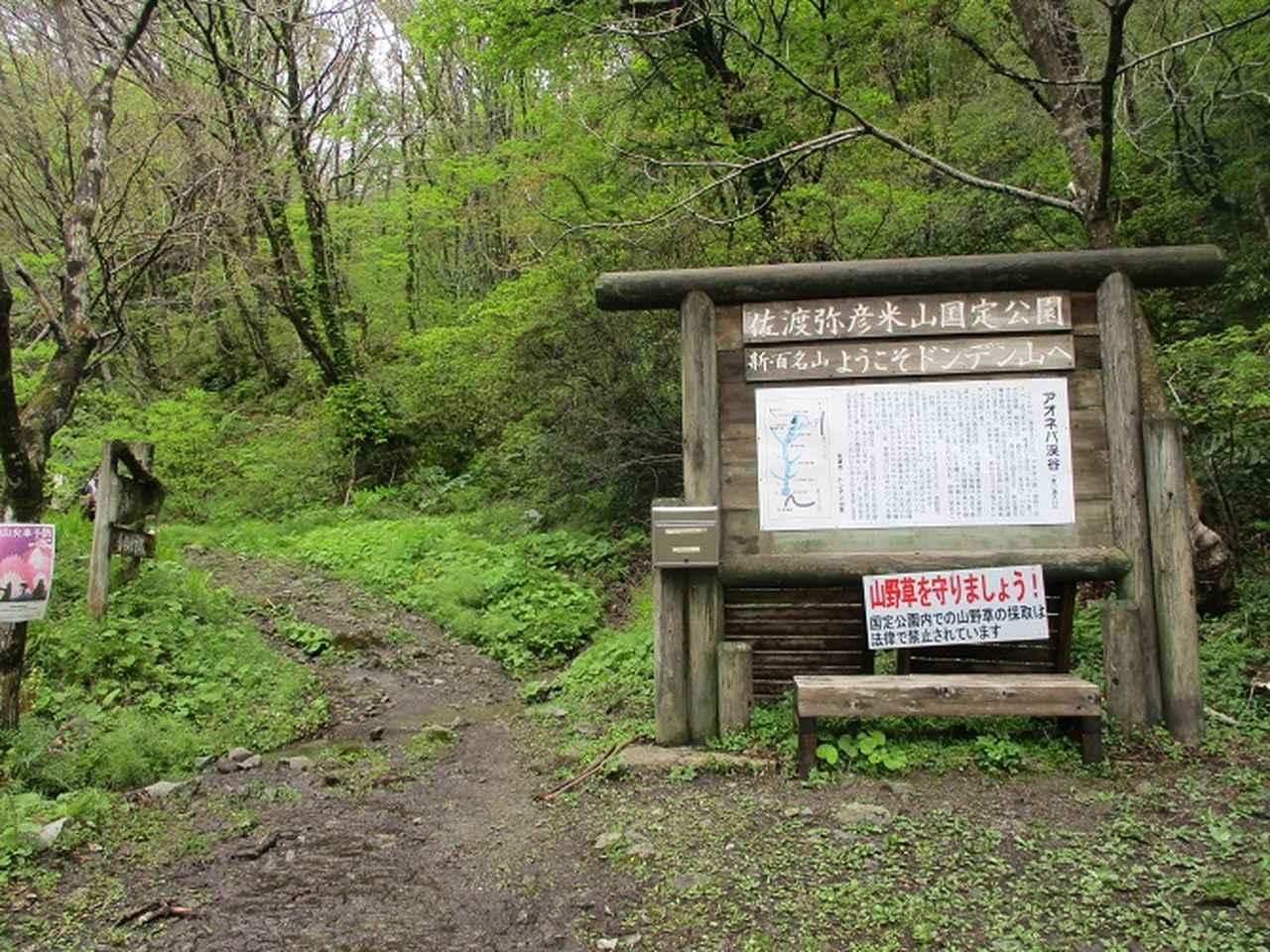 画像2: 5月の山旅会 「佐渡」 ツアーの直前下見報告です!