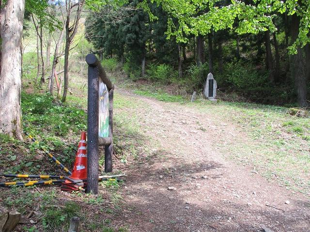 画像2: 5月の山旅会 「坂戸山と八石山」 の直前下見報告です!