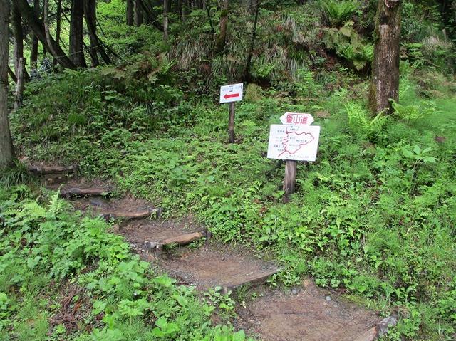 画像1: 5月の山旅会 「坂戸山と八石山」 の直前下見報告です!