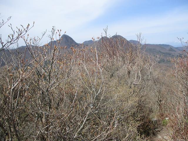 画像9: 来年春のツアーの企画の素材を探して「榛名山の水沢山」に行ってきました!