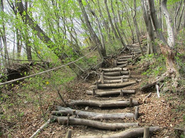 画像4: 来年春のツアーの企画の素材を探して「榛名山の水沢山」に行ってきました!