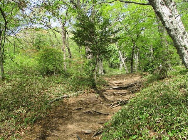 画像2: 来年春のツアーの企画の素材を探して「榛名山の水沢山」に行ってきました!