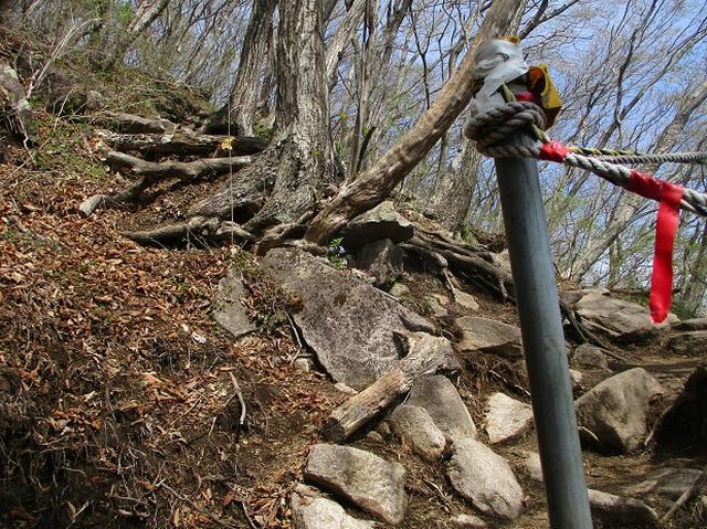 画像5: 来年春のツアーの企画の素材を探して「榛名山の水沢山」に行ってきました!