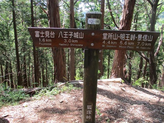 画像6: 5月5日に山旅会 「狐塚峠から八王子城址」 ツアーに行ってきました!