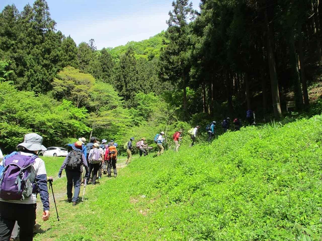 画像5: 5月5日に山旅会 「狐塚峠から八王子城址」 ツアーに行ってきました!
