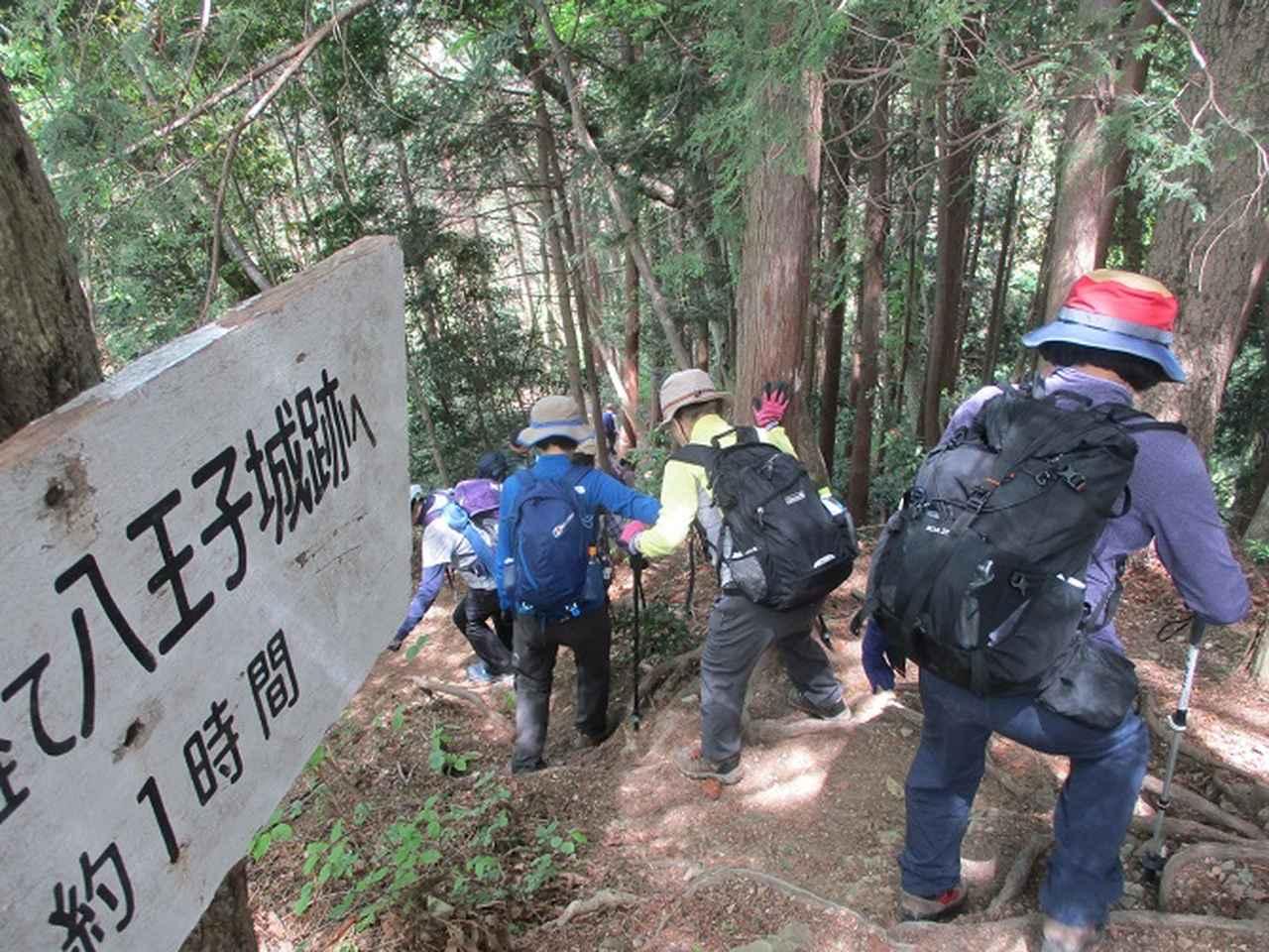 画像10: 5月5日に山旅会 「狐塚峠から八王子城址」 ツアーに行ってきました!