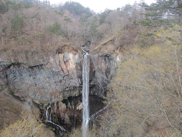 画像10: 5月の山旅会 「茶ノ木平から華厳の滝」 の下見に行ってきました!