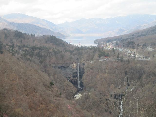 画像2: 5月の山旅会 「茶ノ木平から華厳の滝」 の下見に行ってきました!