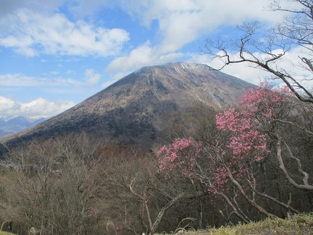 画像5: 5月の山旅会 「茶ノ木平から華厳の滝」 の下見に行ってきました!