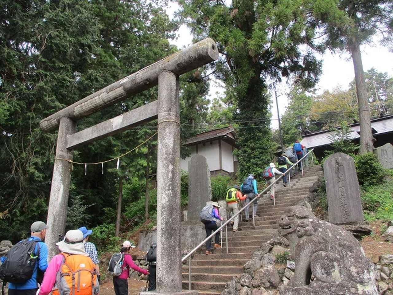 画像11: 5月4日に岡田ガイドのツアーで埼玉県の「越上山」へ行って来ました♪