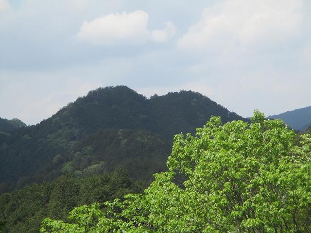 画像8: 5月4日に岡田ガイドのツアーで埼玉県の「越上山」へ行って来ました♪