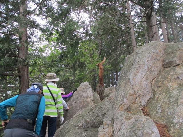 画像9: 5月4日に岡田ガイドのツアーで埼玉県の「越上山」へ行って来ました♪