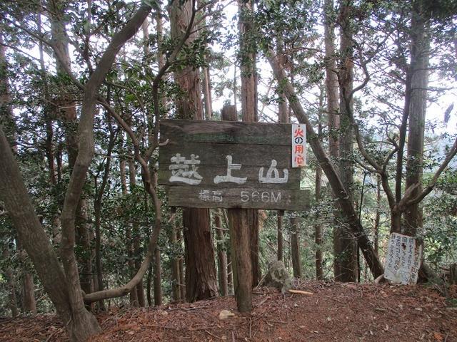 画像10: 5月4日に岡田ガイドのツアーで埼玉県の「越上山」へ行って来ました♪