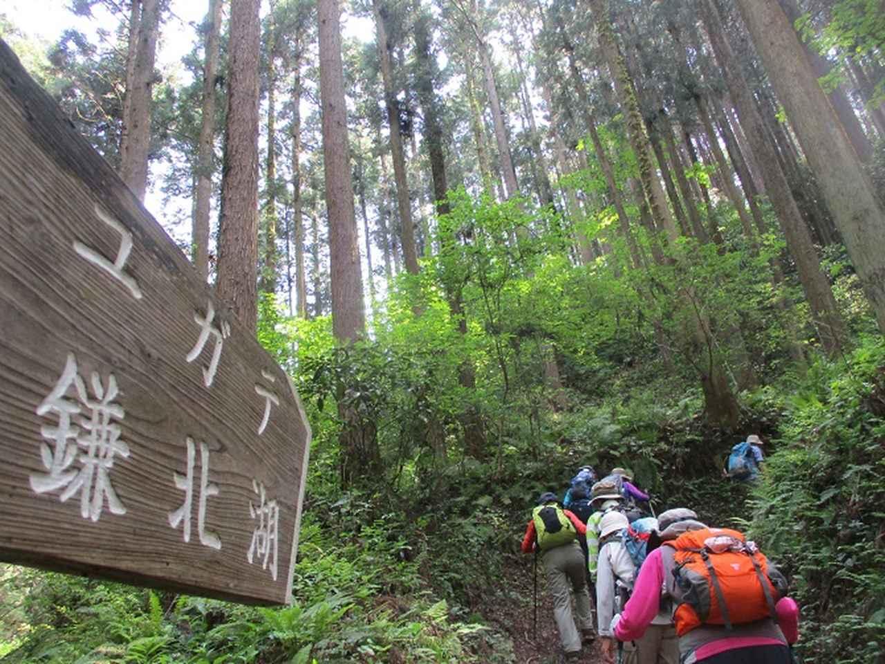 画像4: 5月4日に岡田ガイドのツアーで埼玉県の「越上山」へ行って来ました♪