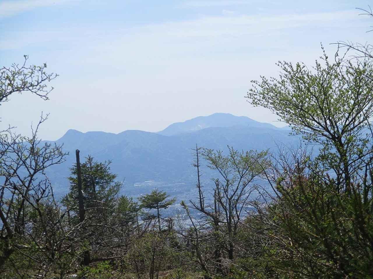 画像4: 5月10日に山旅会 「籠坂峠から三国山」 ツアーにいってきました!