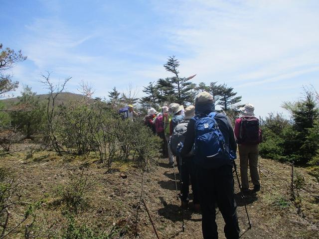 画像3: 5月10日に山旅会 「籠坂峠から三国山」 ツアーにいってきました!