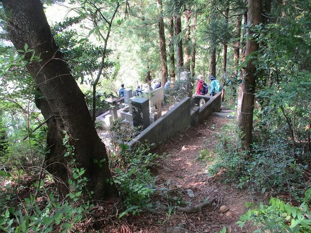 画像11: 5月7日に山旅会 「秩父丸山」 ツアーに行ってきました!