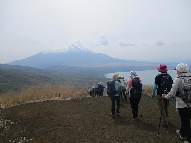 画像12: 5月10日に山旅会 「籠坂峠から三国山」 ツアーにいってきました!