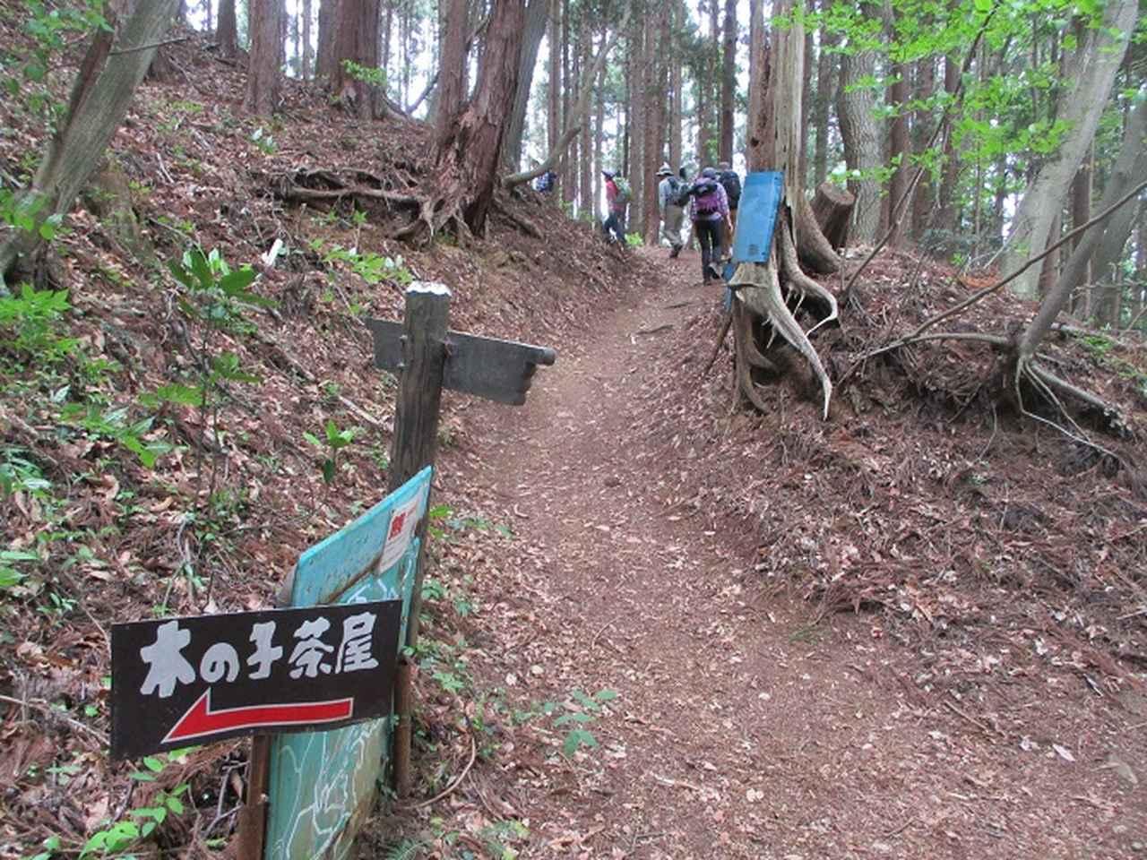画像2: 5月7日に山旅会 「秩父丸山」 ツアーに行ってきました!