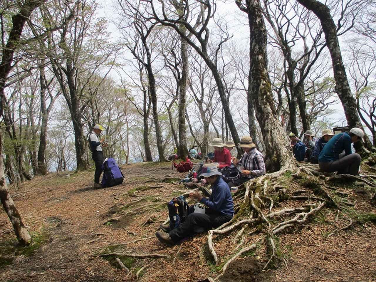 画像9: 5月10日に山旅会 「籠坂峠から三国山」 ツアーにいってきました!