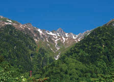 画像: 【関西出発】新緑の駒ヶ根高原ウォーク