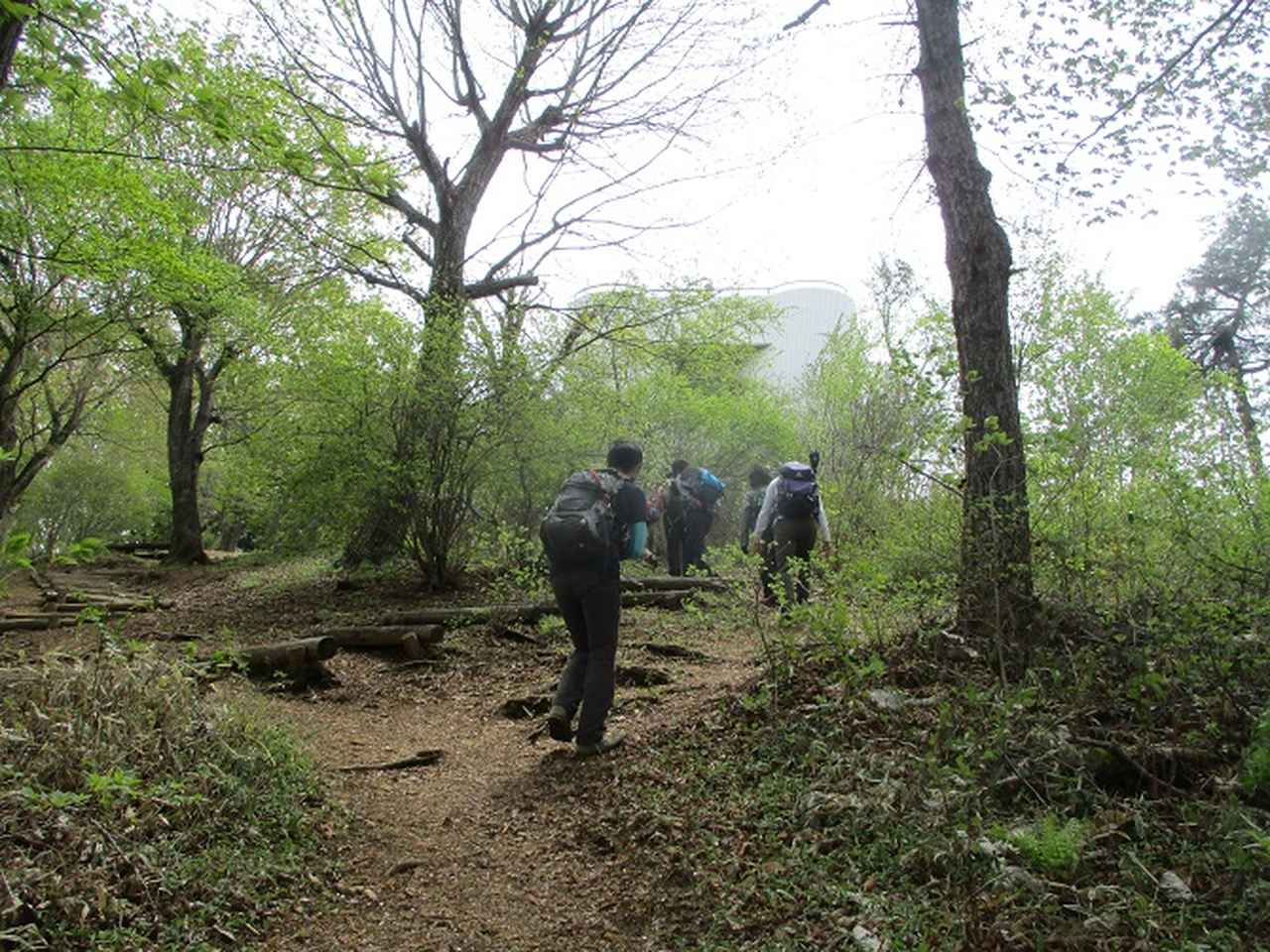 画像6: 5月7日に山旅会 「秩父丸山」 ツアーに行ってきました!