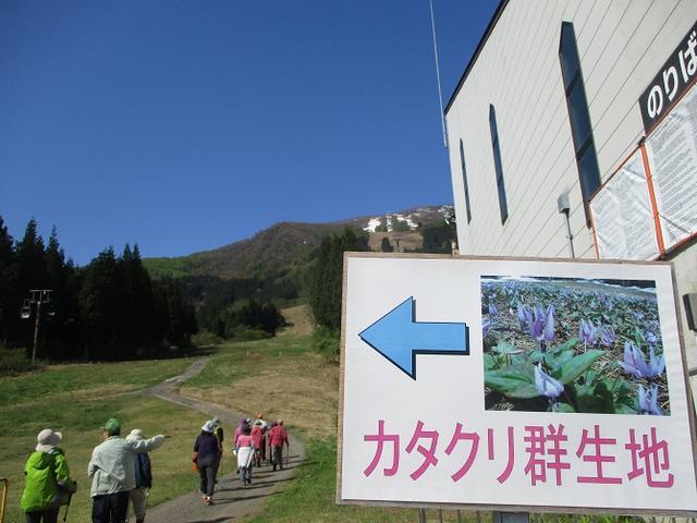 画像11: 5月8日・9日に岡田ガイドのコースで暑い暑い新潟の山へ行って来ました♪
