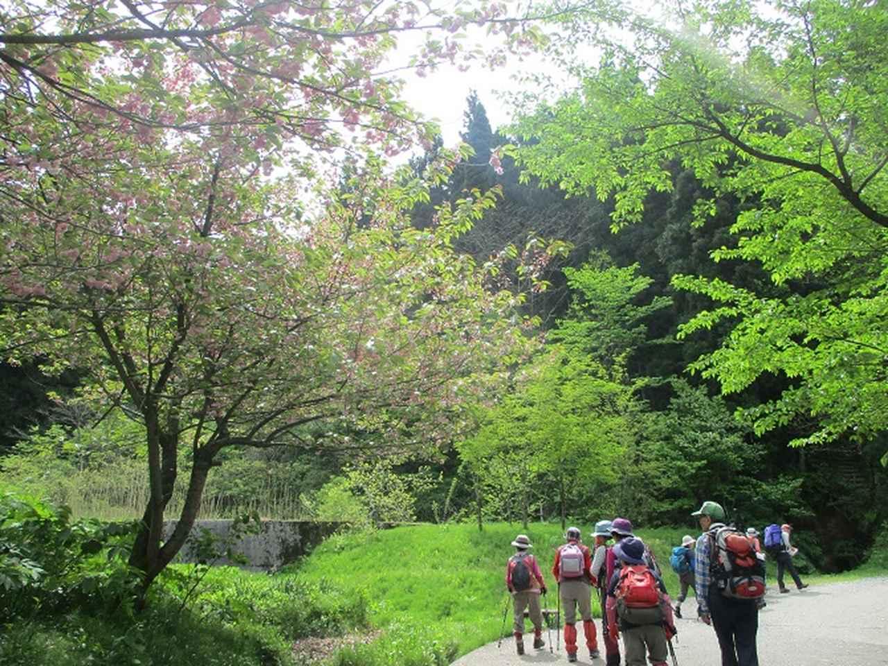 画像2: 5月8日、9日に岡田ガイドのコースで新潟の山へ行って来ました♪