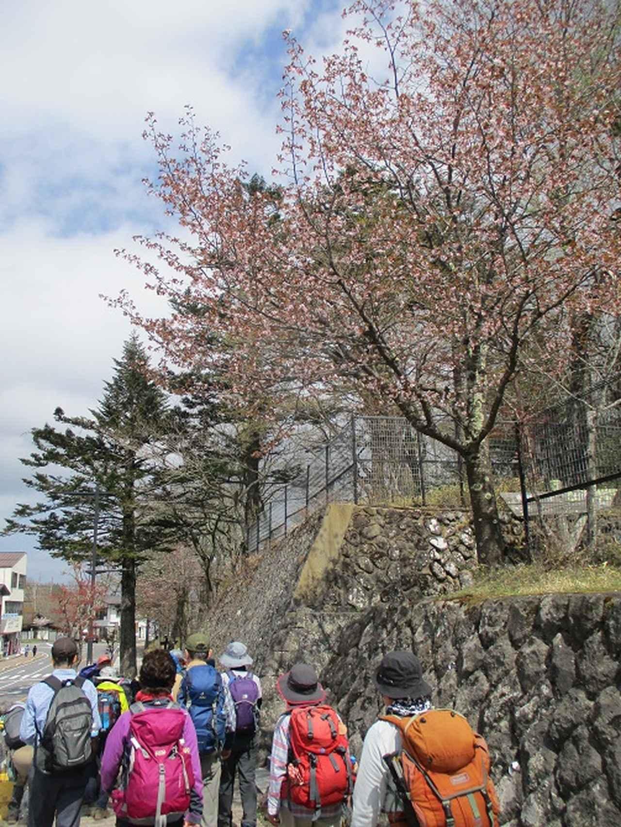 画像14: 13日に岡田ガイドのコースで、 茶ノ木平~華厳の滝 へ行ってきました♪