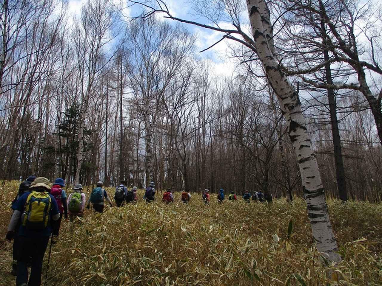 画像9: 13日に岡田ガイドのコースで、 茶ノ木平~華厳の滝 へ行ってきました♪
