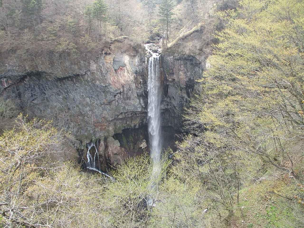 画像16: 13日に岡田ガイドのコースで、 茶ノ木平~華厳の滝 へ行ってきました♪