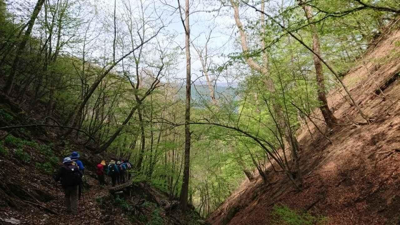 画像12: 宮下ガイドの秀麗富岳十二景シリーズ第9回目! 奈良倉山 へ行って来ました♪
