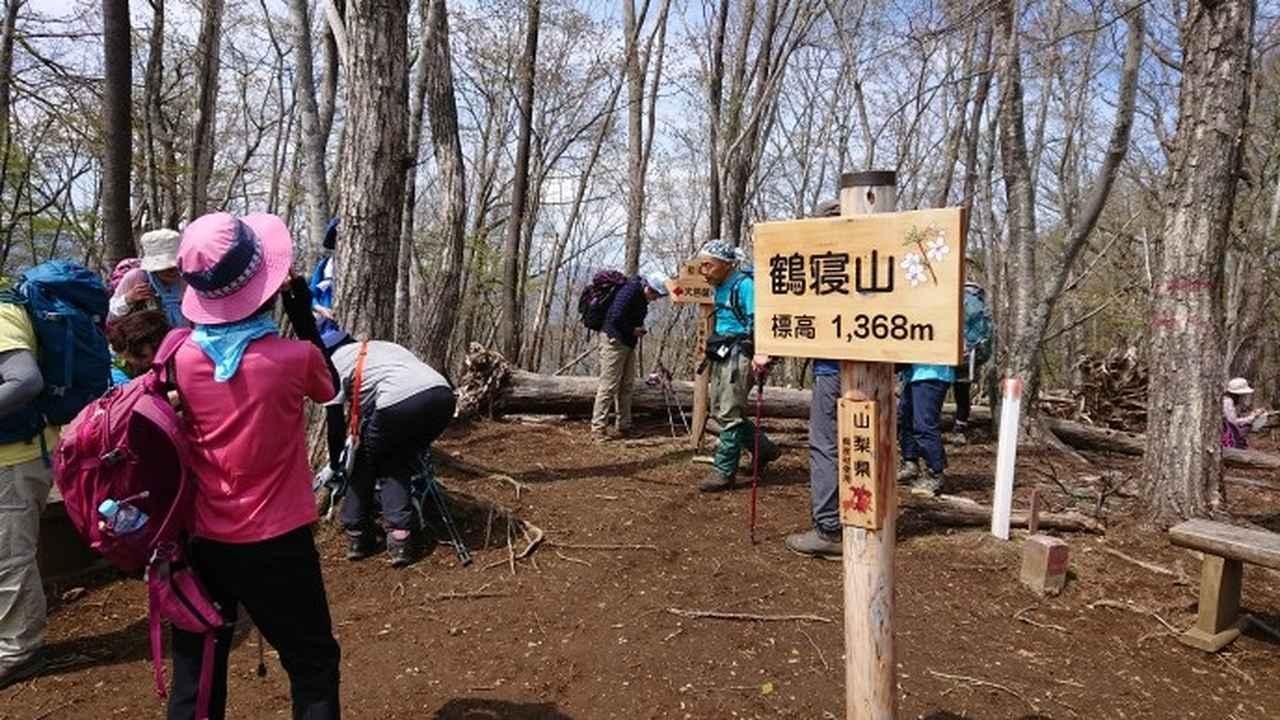 画像8: 宮下ガイドの秀麗富岳十二景シリーズ第9回目! 奈良倉山 へ行って来ました♪