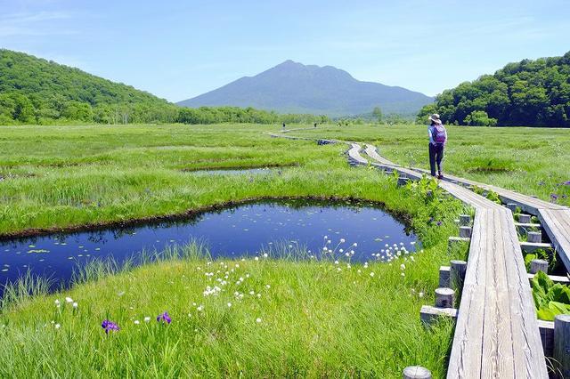 画像: その他にも尾瀬のハイキングツアーを紹介中!!