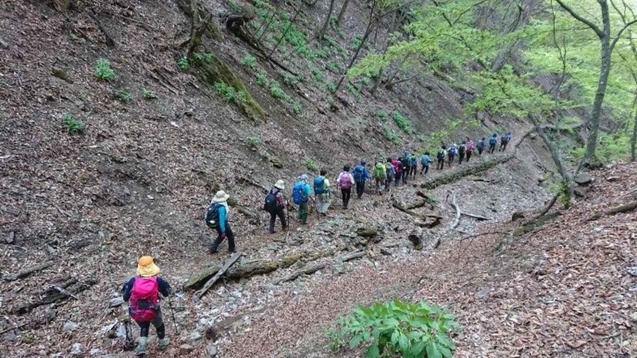 画像11: 宮下ガイドの秀麗富岳十二景シリーズ第9回目! 奈良倉山 へ行って来ました♪