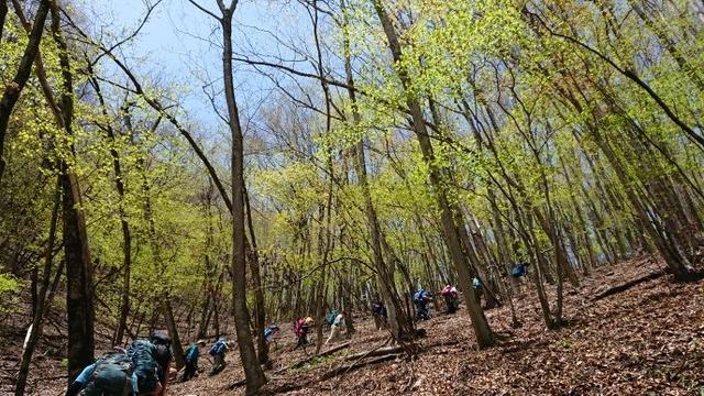 画像4: 宮下ガイドの秀麗富岳十二景シリーズ第9回目! 奈良倉山 へ行って来ました♪