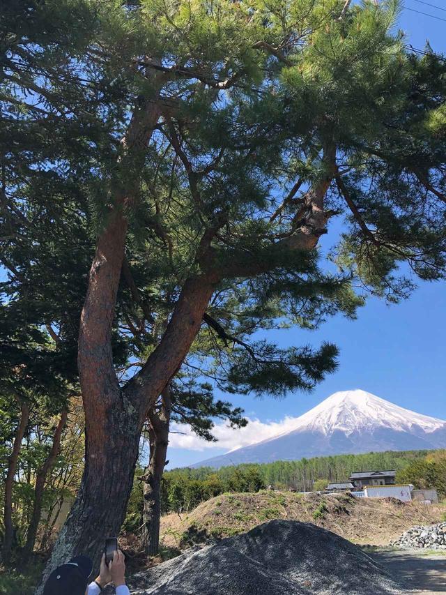 画像: 一緒にてくてく歩いていこう!ウォーキングツアー ~富士山すそ野ぐるり一周ウォーク~ ツアーで見られる絶景・魅力をご紹介 第2弾
