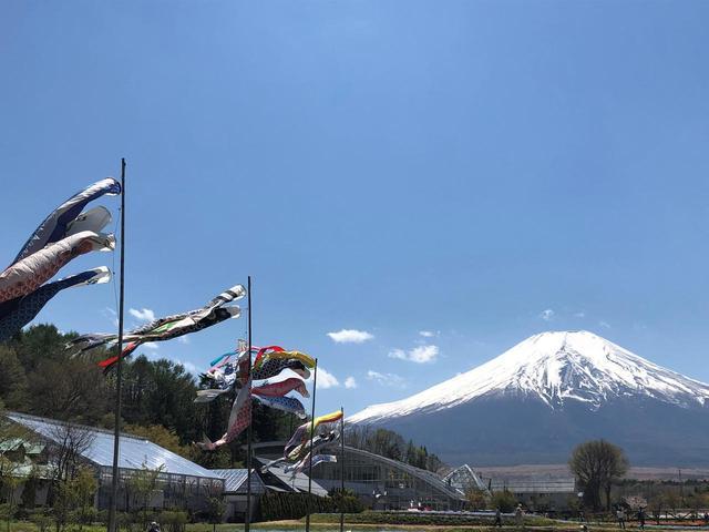画像5: 富士山すそ野ぐるり1周ウォーク 第2回に行ってきました!
